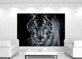 Foto tapeta tigar